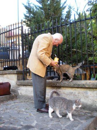 Vittorio Vinti con i suoi gatti