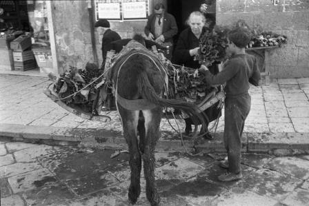 Racalmuto, maggio 1966 (Foto di Enzo Sellerio)